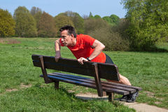 Man Exercising doing PressUps on a Park Bench Stock Images
