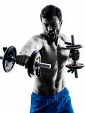 Man exercising fitness weights exercises Stock Images