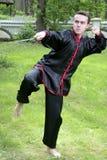 Man exercising martial arts Royalty Free Stock Photo