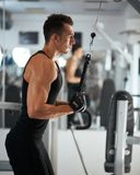 Man exercising in trainer for triceps muscles Royalty Free Stock Photography