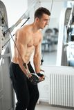 Man exercising in trainer for triceps muscles Stock Photo