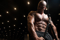 Man Exercising Triceps In The Gym Royalty Free Stock Photos