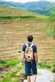 Man exploring rice terraces in Longsheng, Guangxi province of Ch. Man exploring rice terraces in Longsheng, China stock photos