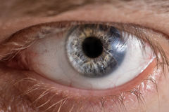 Man eye with contact lens. Blue man eye with contact lens, macro shot. Shallow depth of field stock images