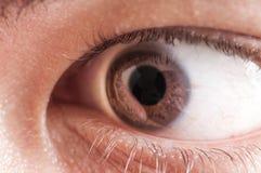 Man eye pupil iris cornea. Man eye vision cornea optic Stock Images
