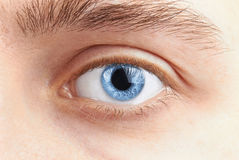 Man eyes Royalty Free Stock Photo