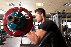 Man för genomkörare för krullning för arm för bicepspredikantbänk på idrottshallen Arkivfoto