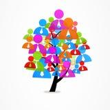 Man för symbol för träd för logoaffärsabstrakt begrepp Arkivfoton