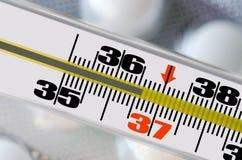 Man för termometer 36,6 Royaltyfri Foto