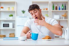 The man falling asleep during his breakfast after overtime work Royalty Free Stock Photos
