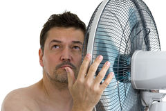 Man with fan royalty free stock image