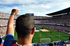 Man, Fan, Person, Football, Soccer Royalty Free Stock Image