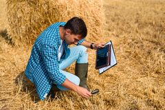 Man farmer agronomist sitting with a tablet and a magnifying glass on the field with hay, control, inspection, analysis, study. Man farmer agronomist sitting stock photos