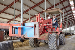 Man or farmer driving tractor at farm Royalty Free Stock Images
