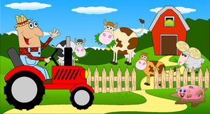 The man is a farmer on a tractor and cows on the meadow Royalty Free Stock Images