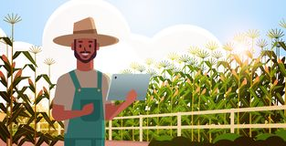 Free Man Farmer With Tablet Monitoring Corn Field Condition Countryman Controlling Agricultural Products Organization Of Stock Photo - 162412760