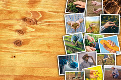 Man in farming and agriculture, photo collage with copy space Royalty Free Stock Image