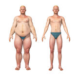 Man Fat to Thin Weight Loss Transformation. 3D illustration of a transformation of a fat overweight man and his thin fit counterpart Stock Photos