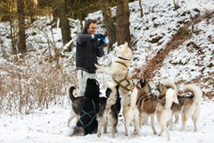 The man feeding the dogs Royalty Free Stock Photos