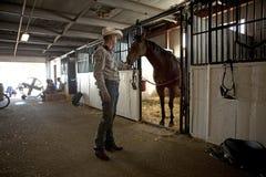 Man feeding a horse, Calgary Stock Image