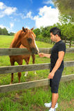 Man feeding a horse in a paddock Stock Image