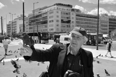 Man feeding pigeons Royalty Free Stock Photography