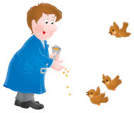 Man feeds sparrows. Isolated clipart illustration of a man that feeds sparrows Stock Image