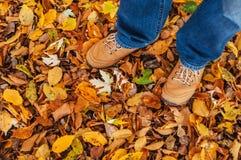 Man feet on leaves Stock Photos