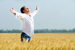 Man in field Royalty Free Stock Images