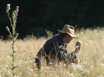 Man in the field. Portrait man with thistle on first plan stock photos