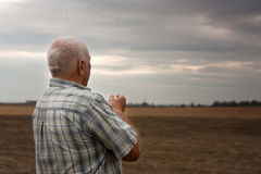 Man in  field in autumn day Royalty Free Stock Photo
