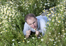 Man  in the field of camomiles guesses on a camomile Stock Images