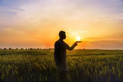 Man among the field with ears of wheat and the sun on his hands Stock Photo