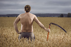 Man in field with scythe Stock Photography
