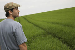 Man In Field Stock Image