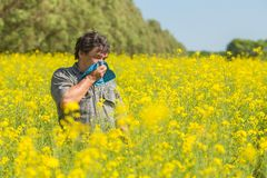 Man in the field suffers from allergies. Man in field blowing his nose and suffering from hay fever Royalty Free Stock Images