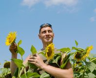 Man in the field of sunflowers Royalty Free Stock Images