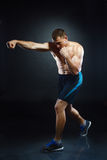 Man fighter Stock Photos