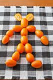 Man figure made of Kumquat fruits Royalty Free Stock Photos