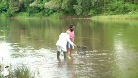 Man fisherman catches a fish. Fly fishing for trout. Fly fishing is most renowned as a method for catching trout. Grayling and salmon. Fishing became a popular stock footage