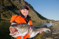 Man in a fisherman`s cap holding a big fish cod. Smiling Royalty Free Stock Images