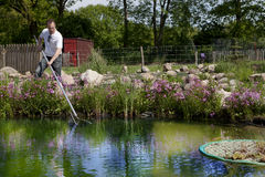 Man fishes in garden pond. The shore is planted with beautiful water plants Stock Photos