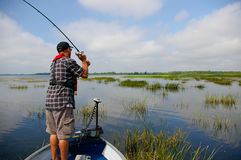 Man Fishing Fisherman Bass. A man fishes for largemouth bass on a hot summer day royalty free stock photo
