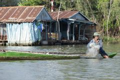 Vietnamese Fisherman, Chau Doc, Vietnam royalty free stock photos