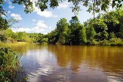 Free Man Fishing In River. Stock Photos - 12411673