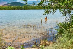 Man is fishing in Kampot Cambodia in the River with Mountains in Background royalty free stock image