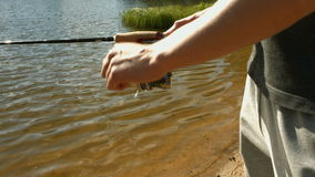 Man fishing in lake stock footage