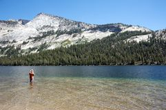 Man fishing in a lake in Yosemite Stock Images
