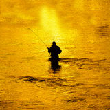 Man Fishing in River Early Morning Stock Photography