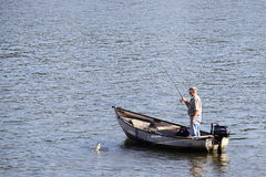 Man fishing from a small boat. An elderly man lands a fish while angling of a small boat in a lake landscape format with space for copy royalty free stock photography
